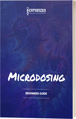Microdosing - A Beginners Guide - Book