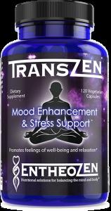 TransZen Front